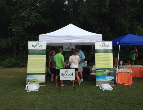 Charleston Green Fair